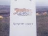 SpringenderLeo-15.jpg