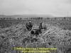 1969-torenvalk-limburgse-jagers-froom-03