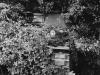 1969-torenvalk-limburgse-jagers-froom-04
