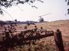 1979-spearpoint_milte-10012