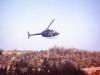 1979-spearpoint_milte-10025