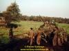 1980-bold-guard-teil-1-2-rainer-eckmayr-24