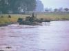 1980-spearpoint-04-von-20