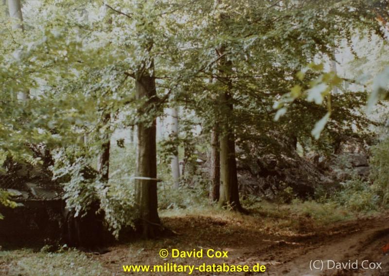 1984-lionheart-galerie-cox-27