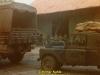 1984-lionheart-kahle-32