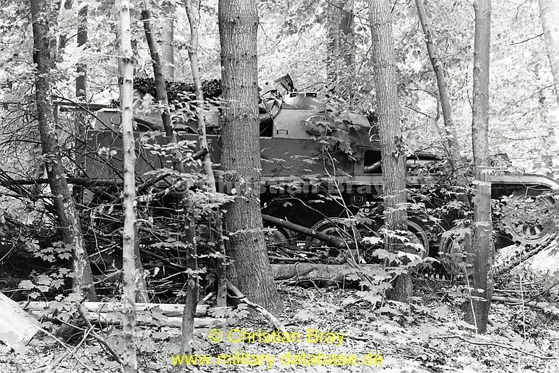 comp_1984-roaring-lion-part-2-5-12tshs