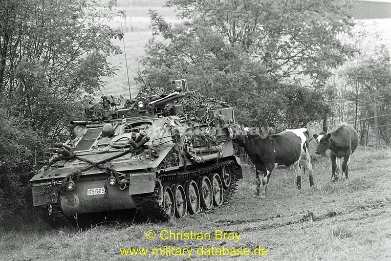 comp_1984-roaring-lion-part-2-5-31tshs