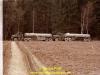 1984-winterc3bcbung-us-army-prc3b6ll-17