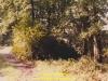 1987-gemischtes-freitmeier-25