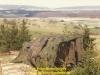 1987-certain-strike-steenbergen-123
