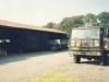 1988-free-lion-ed-breuer-29