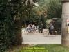 1988-free-lion-willemsen-34
