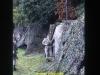 1988-free-lion-klabund-37