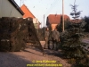 1988-free-lion-klabund-77