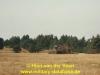 1988-free-lion-van-der-veen-55
