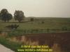 1988-free-lion-van-der-veen-71