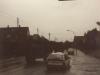 lauenstein-free-lion-1988_04