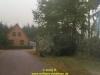 1989-blauer-reiter-galerie-herbst-028