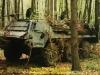 1990-ram-lion-kuckartz-24