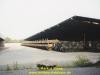 1994-bis-95-lipperbruch-biene-teil-1-11