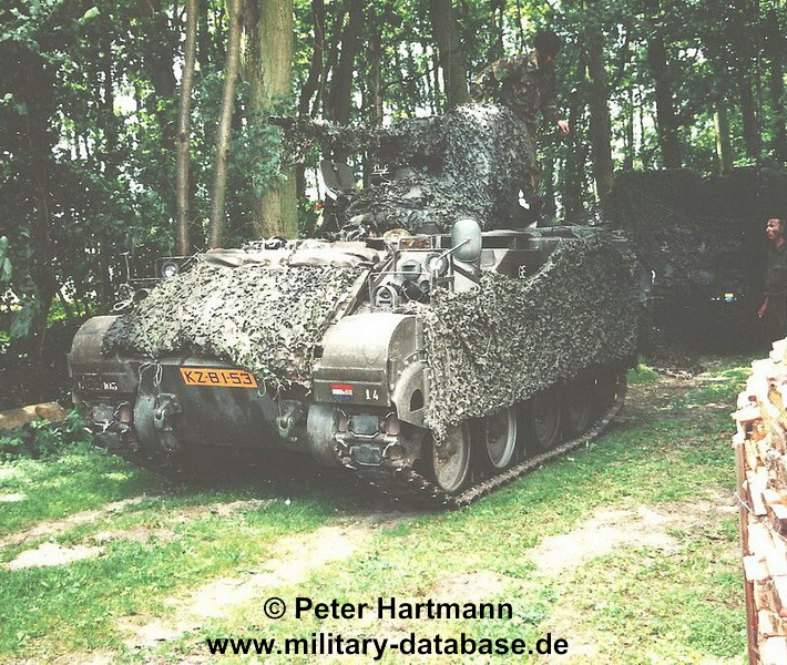 10-light-viper-1993-hartmann