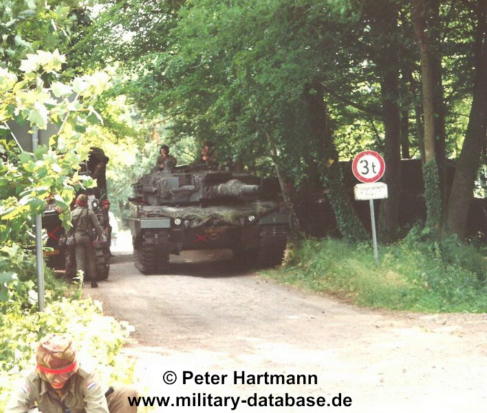 17-light-viper-1993-hartmann