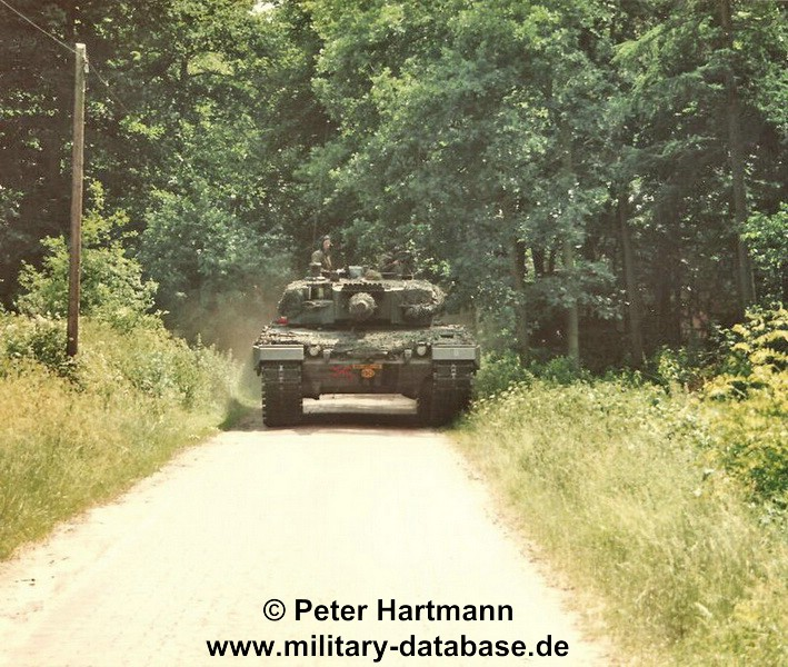 18-light-viper-1993-hartmann