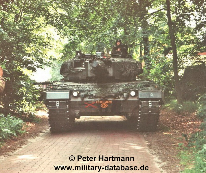 19-light-viper-1993-hartmann