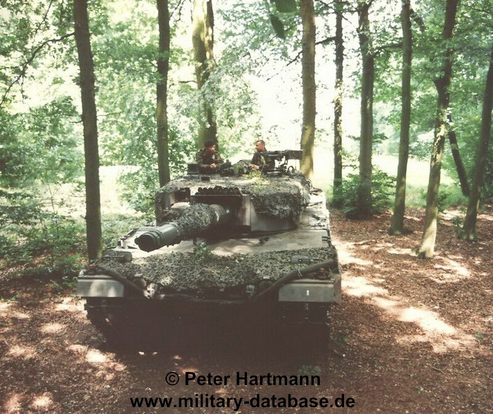 21-light-viper-1993-hartmann