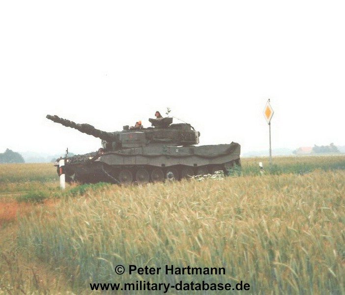 22-light-viper-1993-hartmann