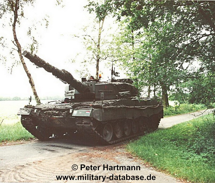 25-light-viper-1993-hartmann