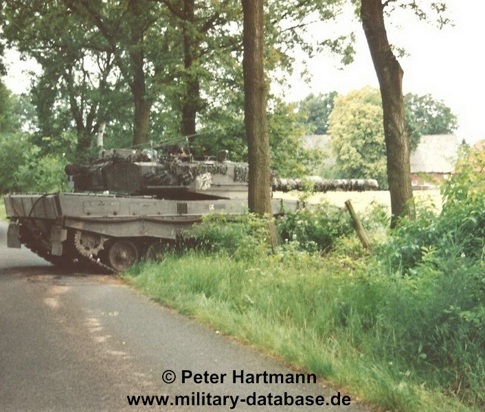 27-light-viper-1993-hartmann