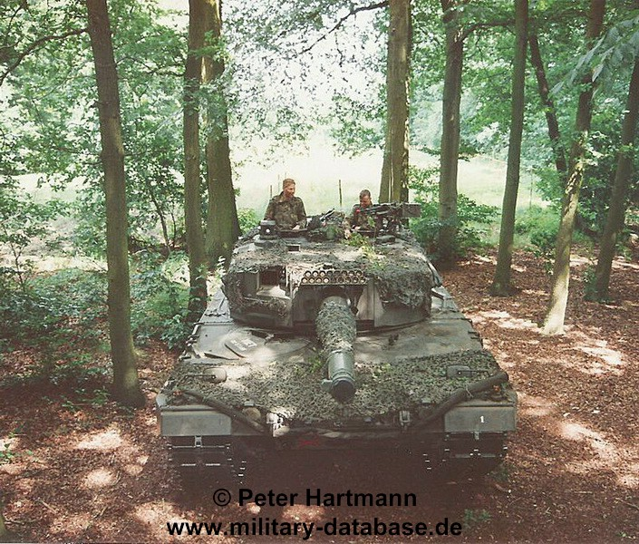 29-light-viper-1993-hartmann