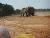 1998-tdot-boostedt-plc3bcdemann-52
