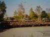 belgier-09