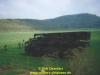 2004-thc3bcringer-lc3b6we-galerie-dirk-oxenfart-21