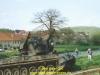 2004-thc3bcringer-lc3b6we-galerie-dirk-oxenfart-55
