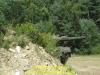 2011-pzbtl-393-bergen-dittmann_052
