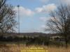2012-premier-battleaxe-de-vries-45