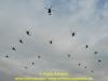 169-bo-fly-out-vorwerk