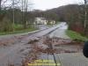 2017-celtic-storm-ii-behrens-19