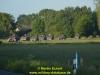 2017-heidesturm-thc3b6ren-eckert-74