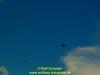2017-heidesturm-thc3b6ren-schober-23