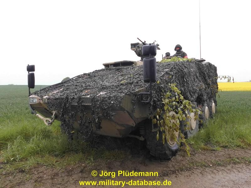 2017-colibri-50-plc3bcdemann-534