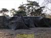 2019-40-jahre-leopard-2-augustdorf-galerie-team-military-database-bild-005