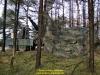 2019-40-jahre-leopard-2-augustdorf-galerie-team-military-database-bild-025