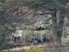 2019-40-jahre-leopard-2-augustdorf-galerie-team-military-database-bild-030