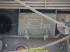 2020-thc3bcringer-lc3b6we-de-vries-05