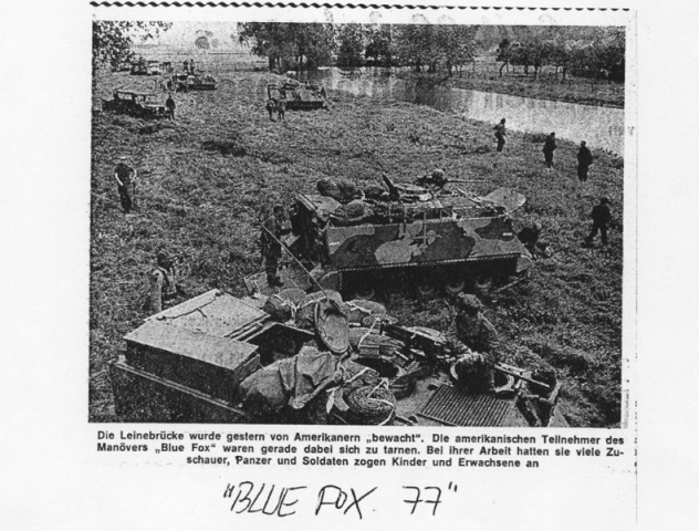 1977 Blue Fox - Galerie Free Lion