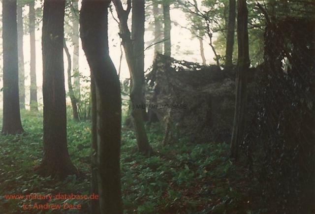 1984-lionheart-andrew-dace-005
